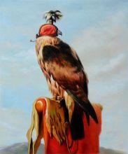 Hooded Falcon