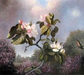 Apple Blossoms and Hummingbird
