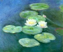 Water Lilies; Evening
