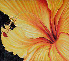 Golden Hibiscus (Left)